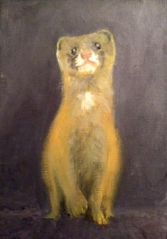 A deceased weasel